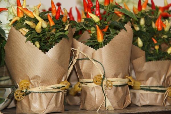 Manteles bautizo y comunion - Macetas originales para plantas ...
